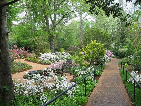 Mynelle Gardens MS