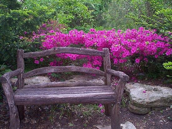 Azleas Botanica Wichita Kansas